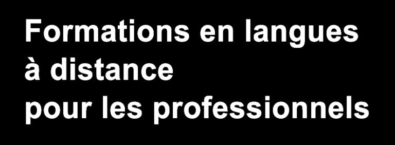 Izidia - Formation en langues à distance pour les professionnels. Cours individuels et collectifs, sur-mesure
